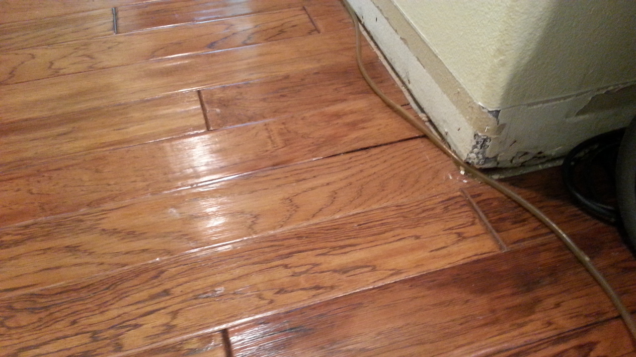Engineered Hardwood Flooring Water Damage Xactfloors